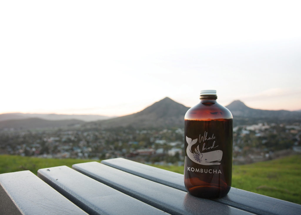 Whalebird Kombucha bottle on bench with background of mountains
